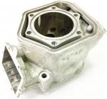 420623263 Цилиндр Двигателя Для Ski Doo 600 ETEC 420623262