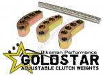 Набор Регулируемых Грузиков Ведущего Вариатора BMP Goldstar Adjustable Clutch Weights 59-81 Грамм